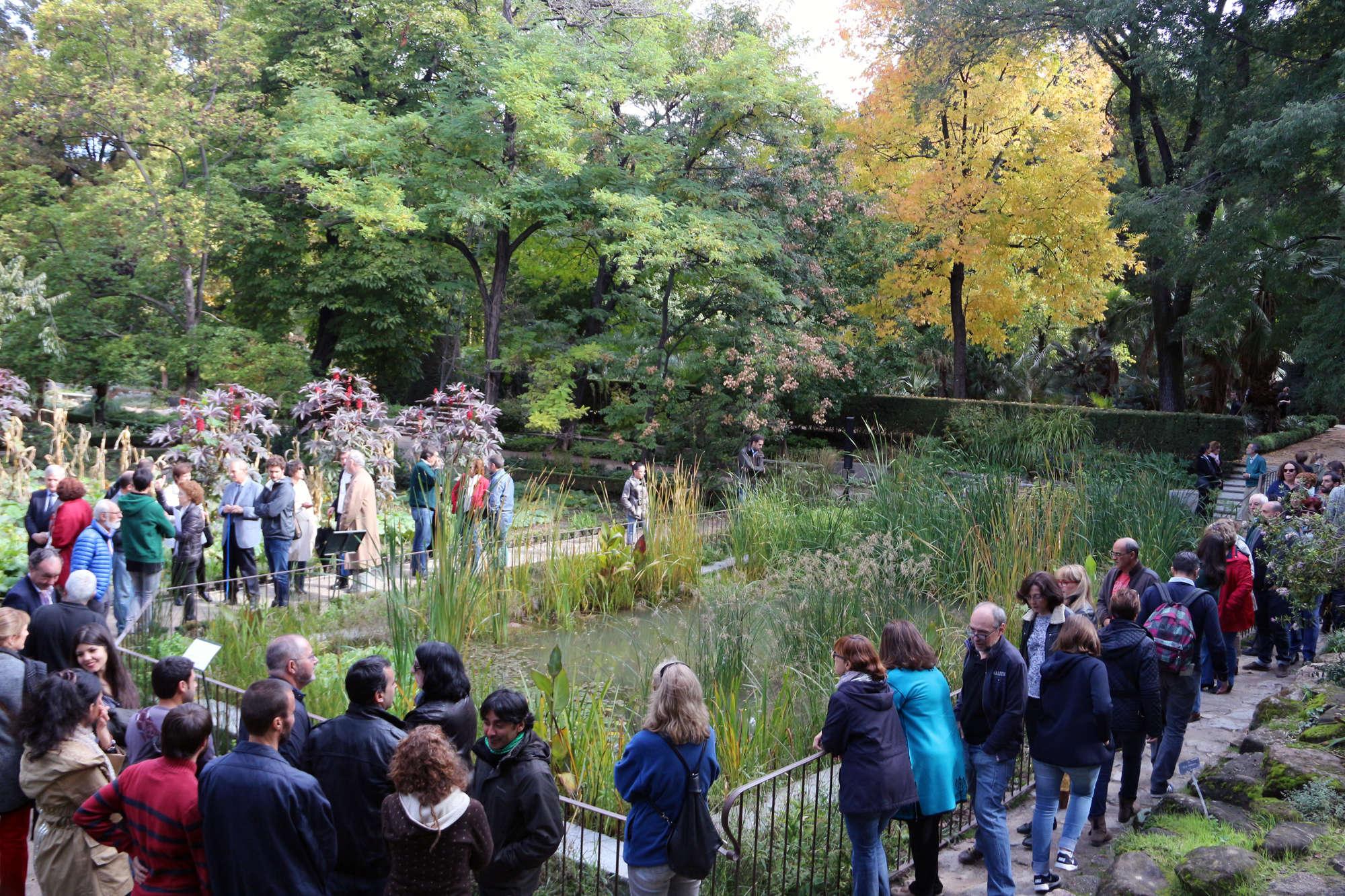 El real jard n bot nico de retiro inaugura un humedal for Jardin botanico conciertos